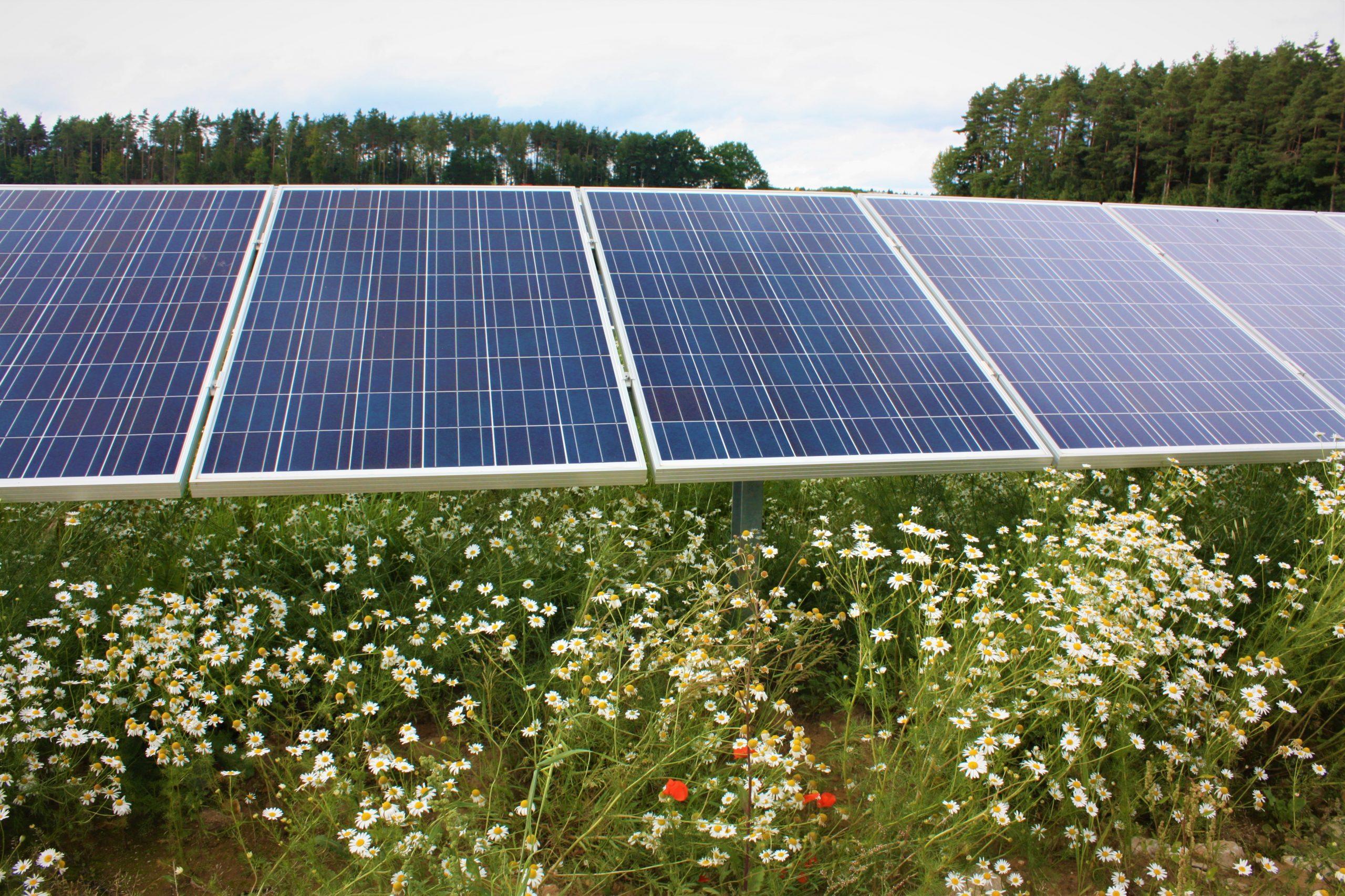 Erhöhung der Höchstgrenze für Photovoltaik-Freiflächenanlagen in Bayern