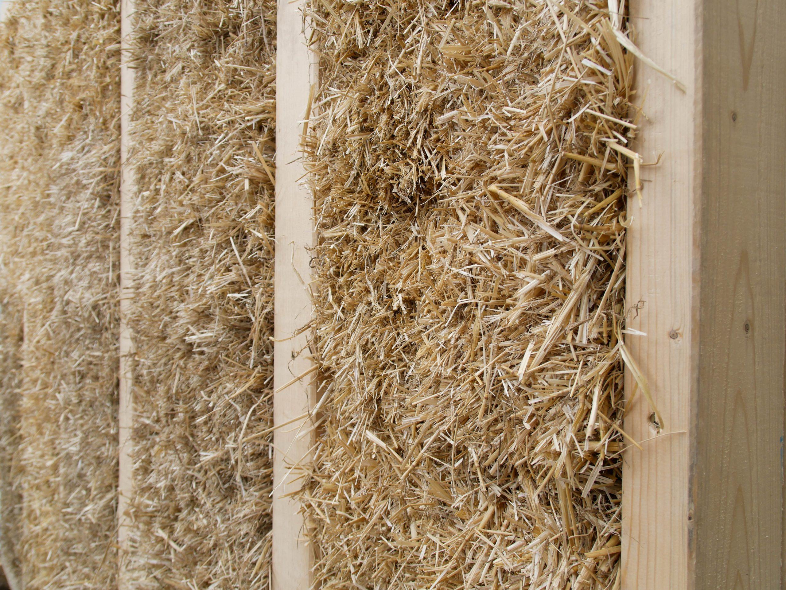 """C.A.R.M.E.N.-Fachgespräch """"Moderner Strohbau – Werte schaffen mit einem CO2-neutralen Baustoff"""" (15.10.2020)"""