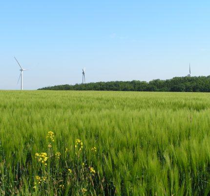 Rekordhoch für Erneuerbare Energien in 2020