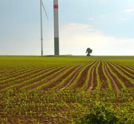 Infraschall durch Windenergieanlagen – Eine Gesundheitsgefahr?