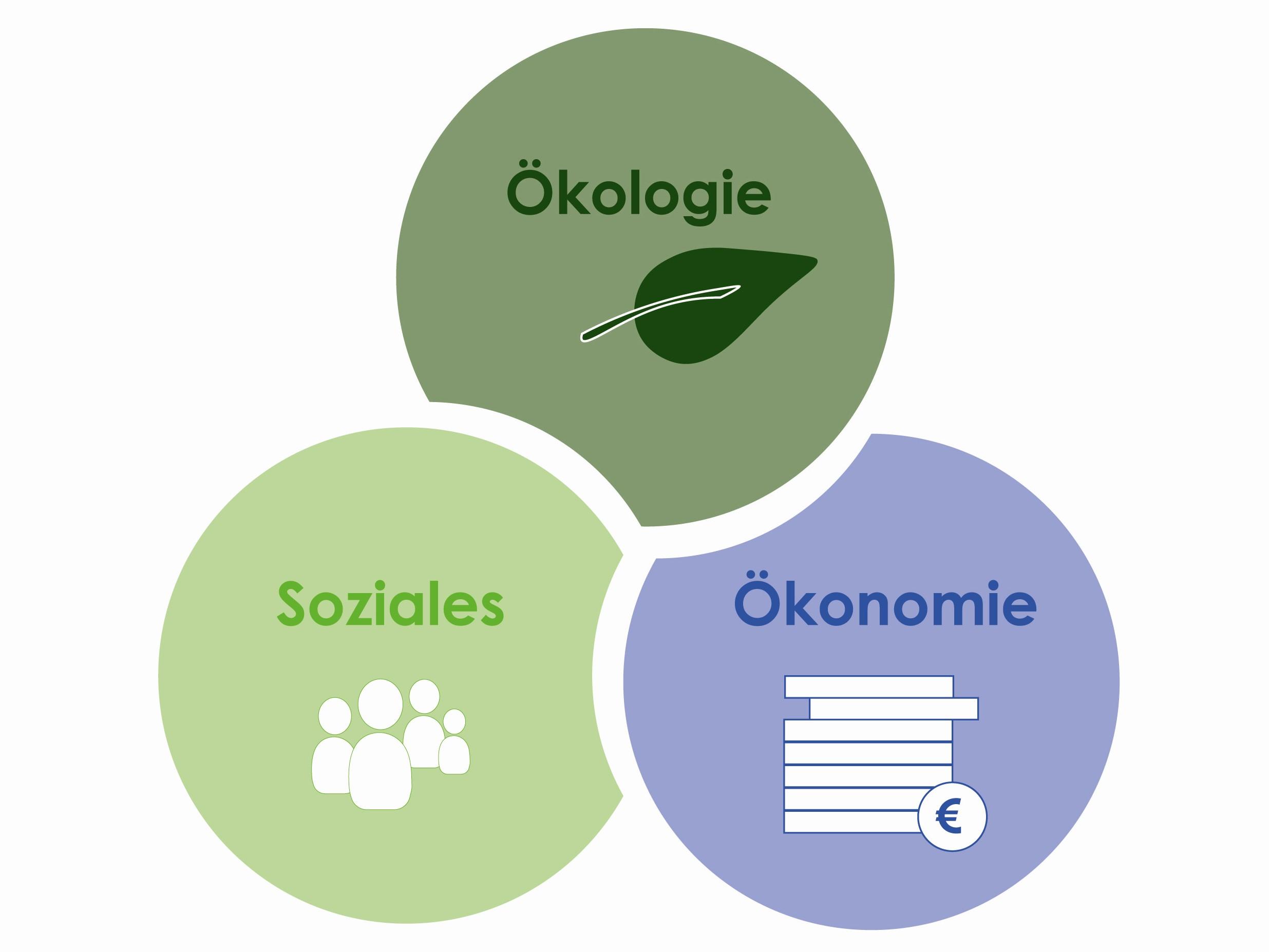 Kriterien für nachhaltige Produkte und Gütezeichen