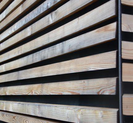 Mit Holz bauen – Zukunft aktiv gestalten