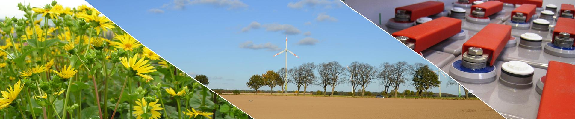 14. Rostocker Bioenergieforum