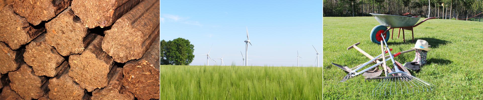 Agrophotovoltaik – Photovoltaik und Landwirtschaft vereinen