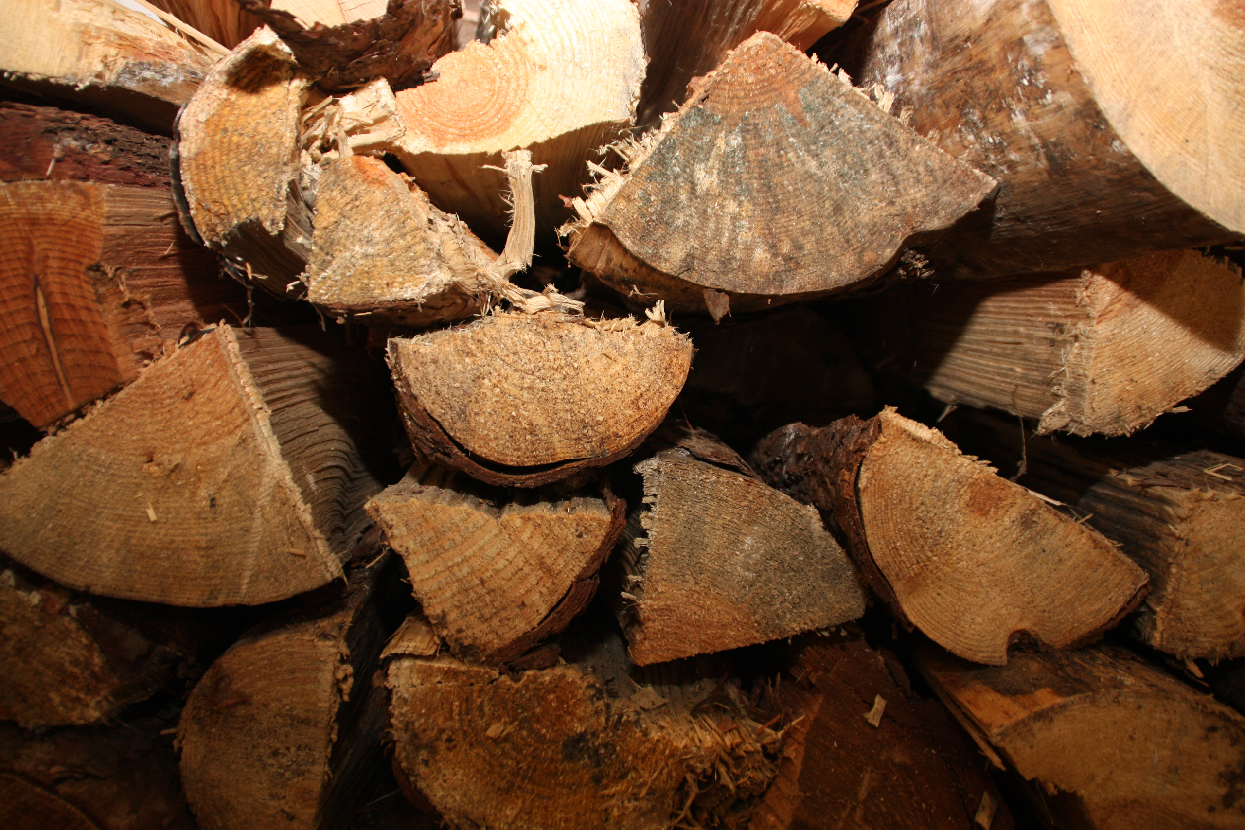 So viel Heizwert steckt im Holz