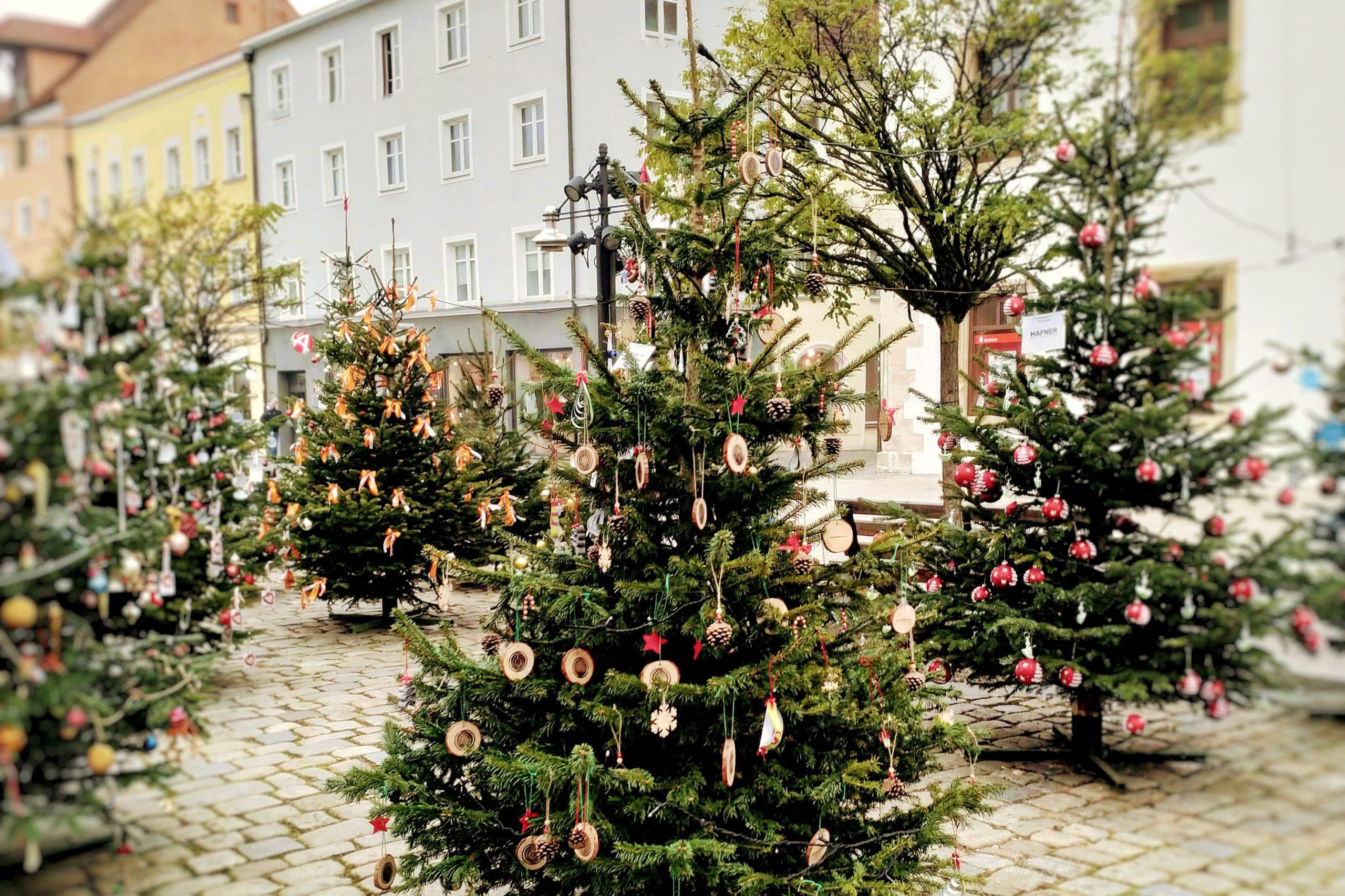 C.A.R.M.E.N. e.V. läutet die Weihnachtssaison ein