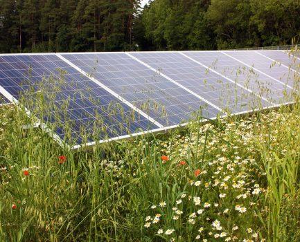 Kriterien für naturverträgliche Solar-Freiflächenanlagen
