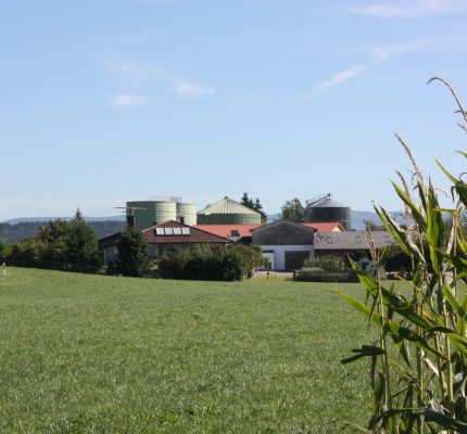 Wirtschaftlichkeit von Biogasanlagen