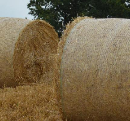 LaRA: Landwirtschaftliche Rest- und Abfallstoffverwertung
