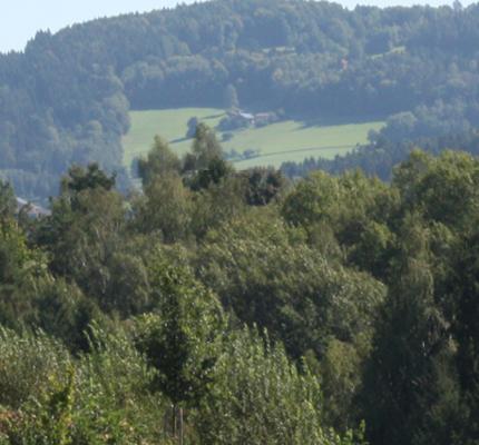 REzAB: Repoweringmaßnahmen hinsichtlich zukünftiger Aufgaben von Biogasanlagen