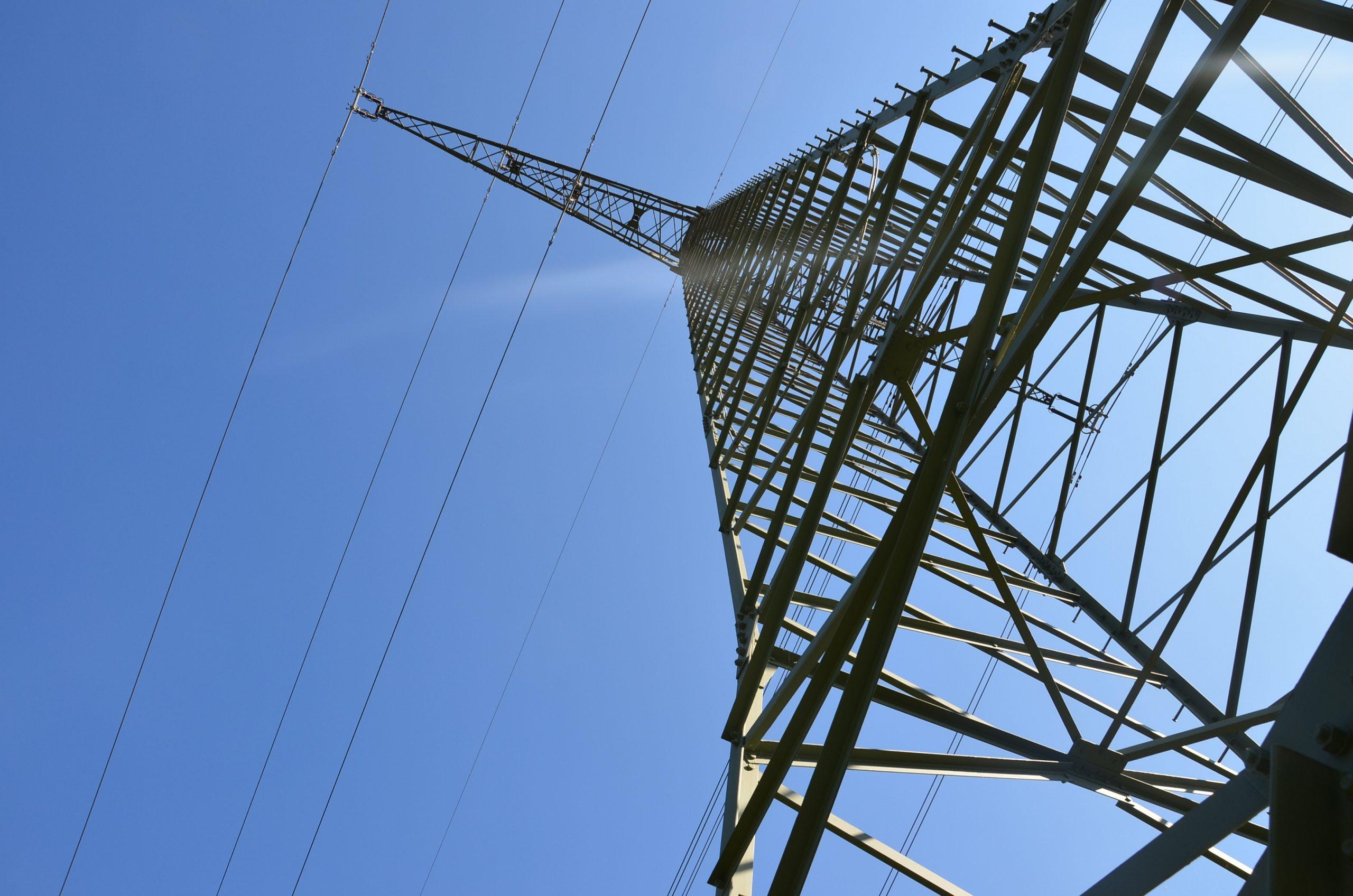 C.A.R.M.E.N. e.V. informiert online über Vermarktungsinstrumente für Erneuerbare Energien