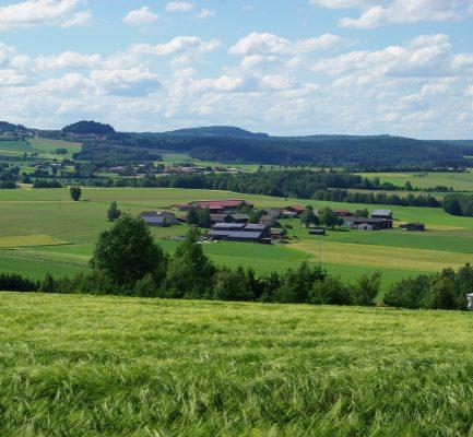 Umweltprojekte in ganz Bayern
