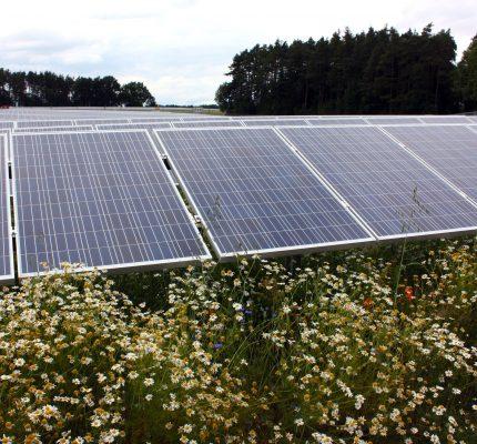 WebKonferenz informiert über Planung und Realisierung von Photovoltaik-Parks