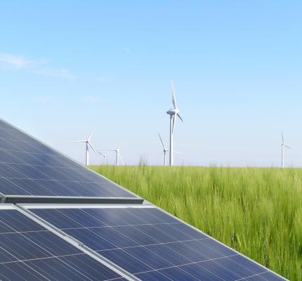 Großes Interesse am  C.A.R.M.E.N.-WebSeminar zu Planungsrecht PV und Wind