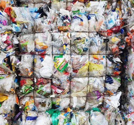 Recycling von Biokunststoffen im Fokus