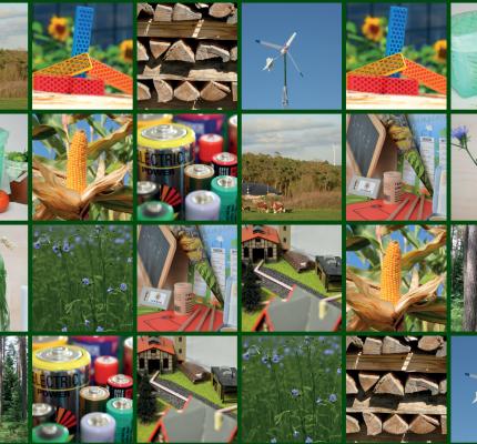 """C.A.R.M.E.N.-Kinderwoche: Memory Spiel """"Erneuerbare Energien, Nachwachsende Rohstoffe & Biobasierte Produkte"""""""