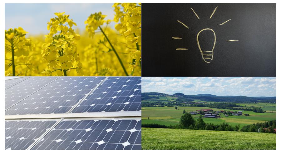 """29. C.A.R.M.E.N.-Symposium: Abschlussveranstaltung """"Innovative Ideen für eine nachhaltige Zukunft"""" (14.07.2021)"""