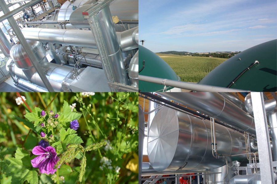 """29. C.A.R.M.E.N.-Symposium: WebKonferenz """"Bioraffinerie – Biogasanlagen als Rohstofflieferanten der Zukunft"""" (13.07.2021)"""
